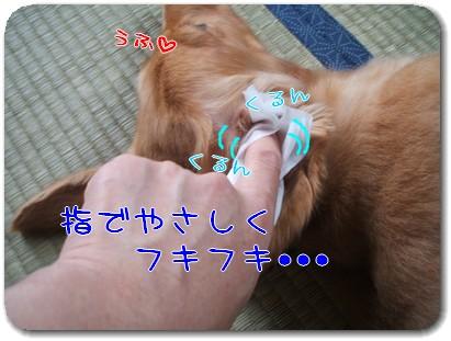 Photo1008123.jpg