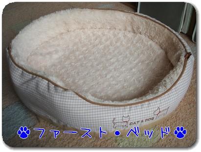 Photo1008141.jpg