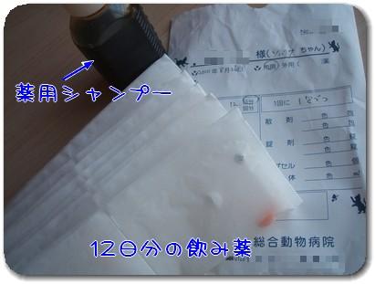 Photo1008271.jpg