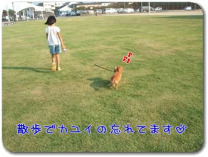 Photo1008273.jpg