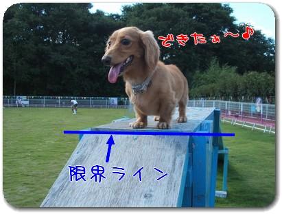Photo1009014.jpg
