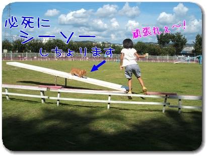 Photo1009015.jpg