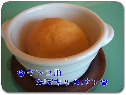 Photo1009046.jpg