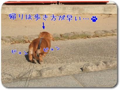 Photo1009073.jpg