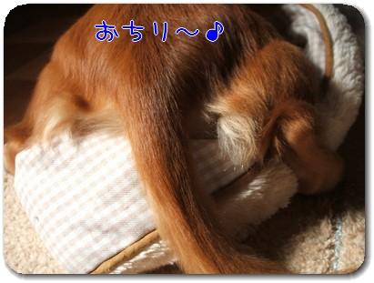 Photo1010012.jpg