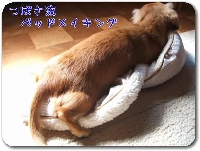 Photo1010013.jpg
