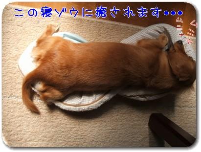 Photo1010014.jpg