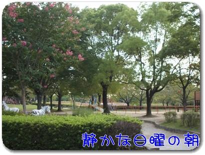 Photo1010031.jpg
