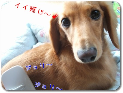 Photo1010053.jpg