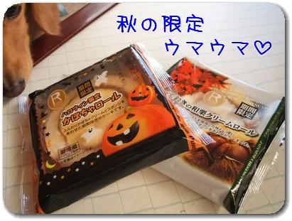 Photo1010122.jpg