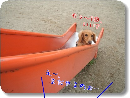 Photo1010266.jpg