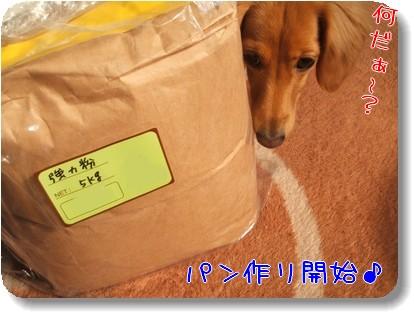 Photo1011121.jpg