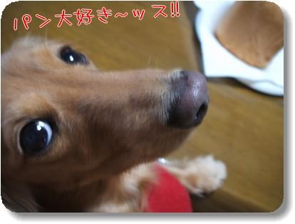 Photo1011123.jpg