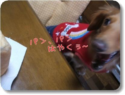 Photo1011124.jpg