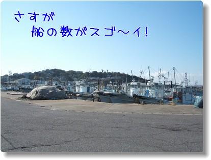 Photo10111245.jpg