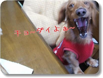 Photo1011125.jpg