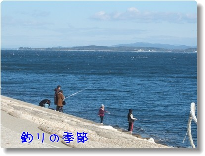 Photo10111251.jpg