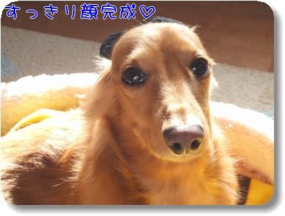 Photo1011163.jpg