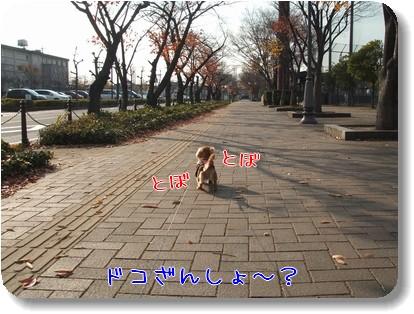 Photo1012042.jpg