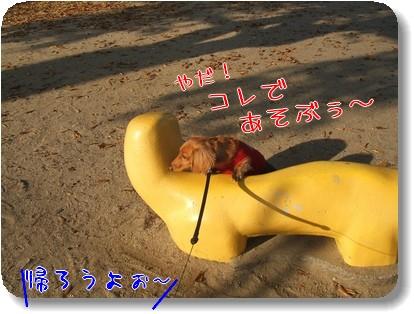 Photo1012044.jpg