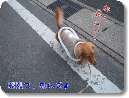 Photo1012181.jpg