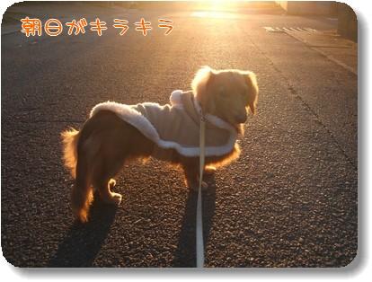Photo1012182.jpg