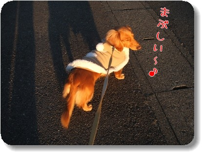 Photo1012183.jpg