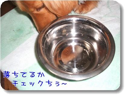 Photo1012205.jpg