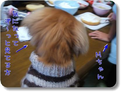 Photo1012242.jpg