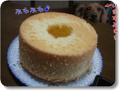 Photo1012272.jpg