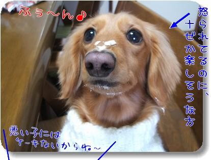 Photo1012275.jpg
