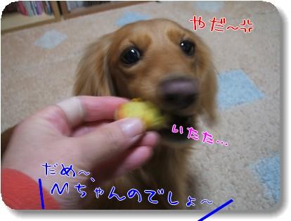 Photo1012284.jpg