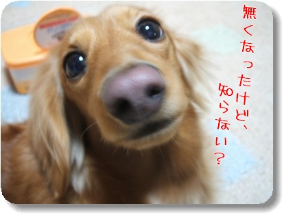 Photo1012286.jpg