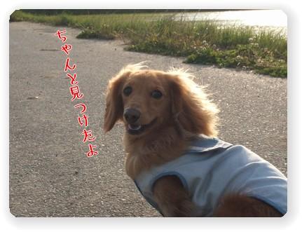 Photo33-4.jpg
