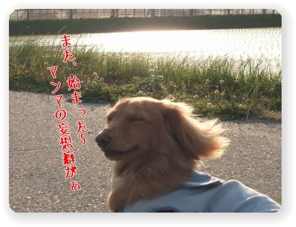 Photo33-6.jpg