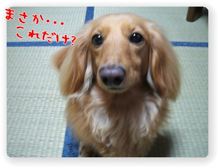 photo1006284.jpg