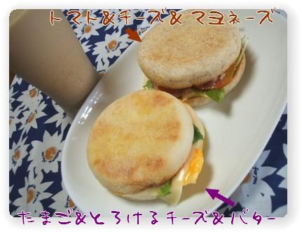 photo1007032.jpg