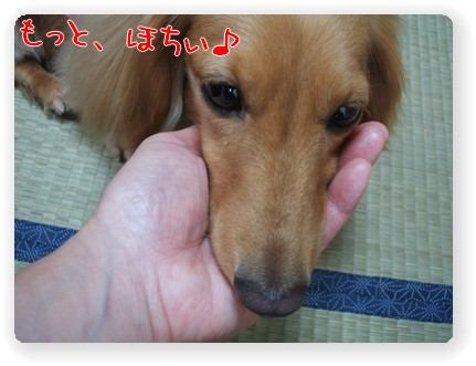 photo1007035.jpg