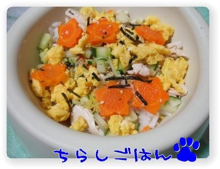 photo1007077.jpg