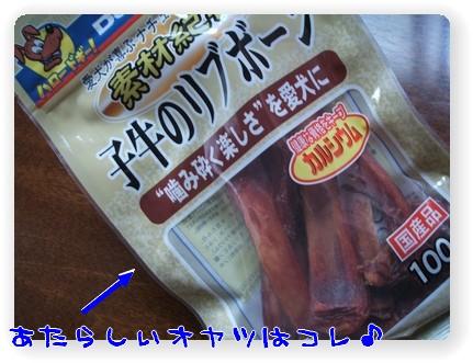photo10071131.jpg