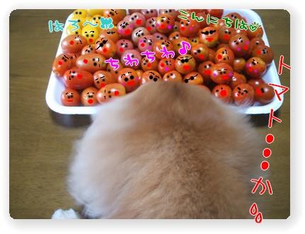 photo10071142.jpg