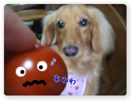 photo10071143.jpg