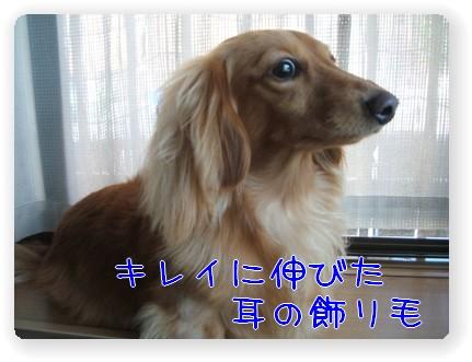 photo1007242.jpg