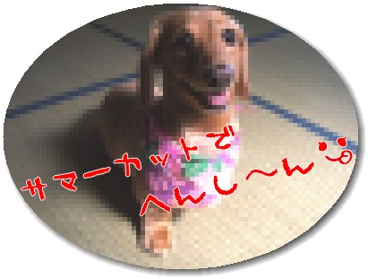 photo1007246.jpg