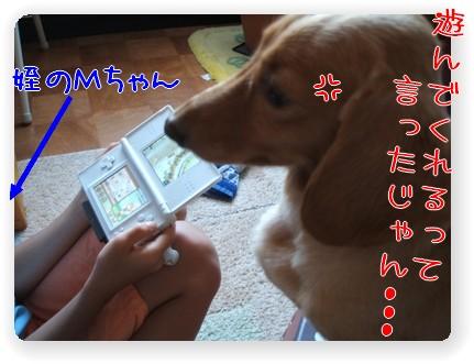 photo1007282.jpg