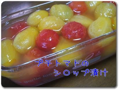 photo1008043.jpg