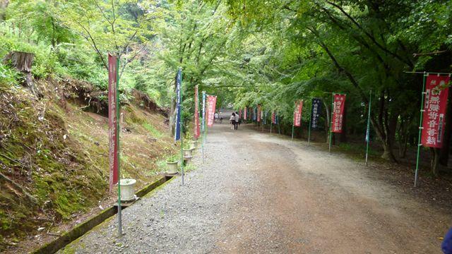 kyouto110822020.jpg