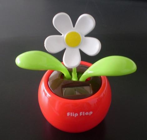 Flip Flap-a