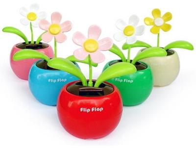 Flip Flap-cc