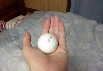 ゴルフボールを……
